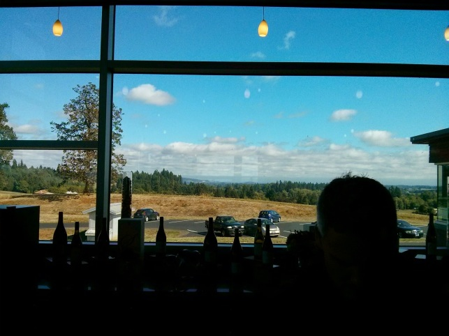 View from inside Stoller tasting room