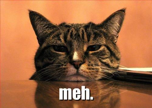 meh-cat